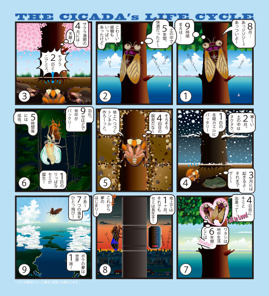 SUDOKU ART「数独セミの一生」